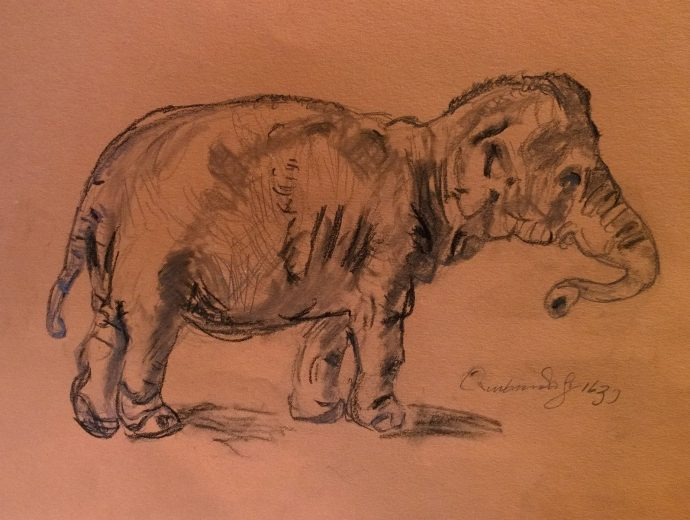 Copy of Rembrandt's Elephant, by William Eaton, 2018